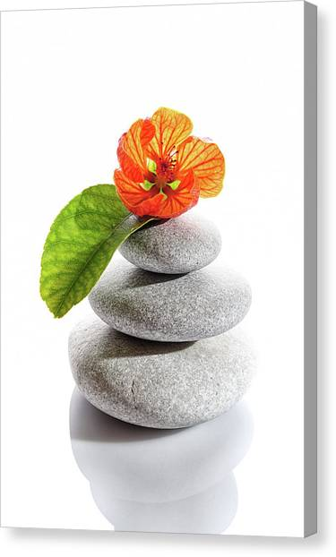 Balanced Stones And Red Flower Canvas Print by Gm Stock Films