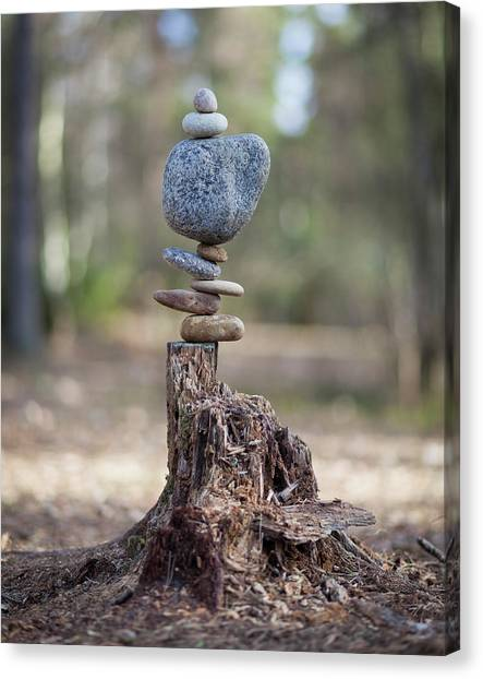 Balancing Art #58 Canvas Print