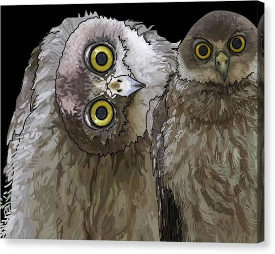 Barking Owls 2 Canvas Print
