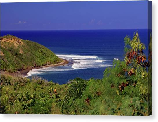 Canvas Print featuring the photograph Bay In St Kitts by Tony Murtagh