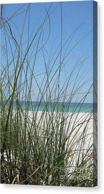 Canvas Print - Beach View by Megan Cohen
