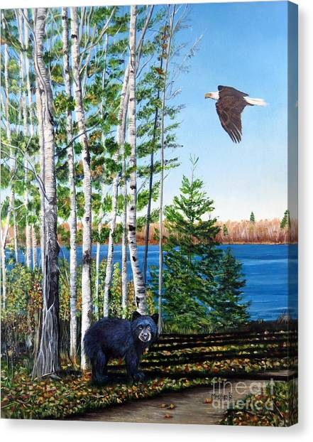 Little Bear And Eagle Wing Canvas Print