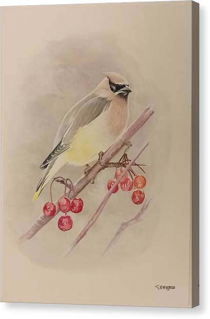 Beautiful Bird Canvas Print