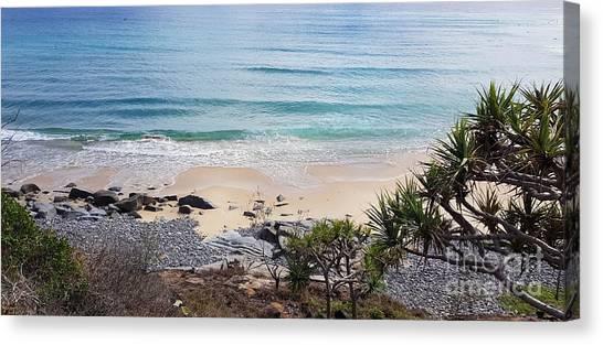 Beautiful Noosa Beach  Canvas Print