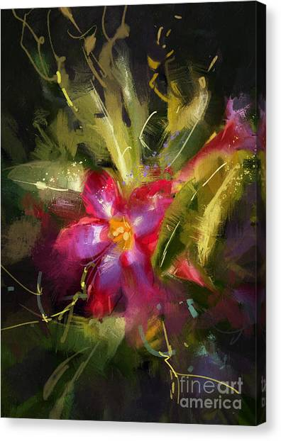 Acrylic Canvas Print - Beautiful Painting Of Desert Rose by Tithi Luadthong