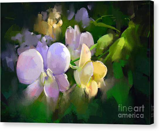 Acrylic Canvas Print - Beautiful Painting Of Orchid by Tithi Luadthong