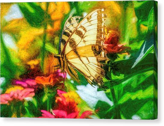 Beautiful Swallow Tail Butterfly Canvas Print
