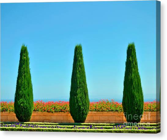 Form Canvas Print - Beautiful Trees And Flowers In The by Malinovskaya Yulia