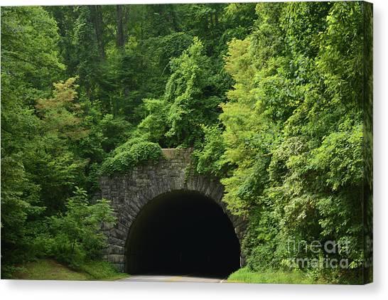 Beautiful Tunnel With Greenery, Nc Canvas Print