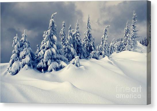 Hoarfrost Canvas Print - Beautiful Winter Landscape With Snow by Creative Travel Projects