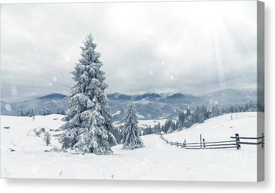 Hoarfrost Canvas Print - Beautiful Winter Landscape With Snow by Ubc Stock