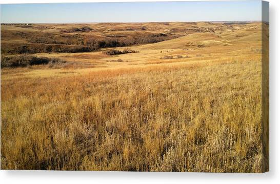 Beauty On The High Plains Canvas Print