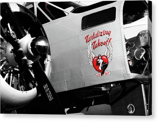 Canvas Print featuring the photograph Beech At-11 In Selective Color by Doug Camara