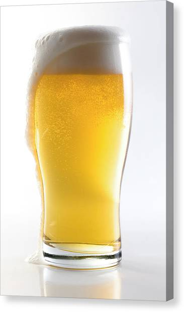 Beer Glass Wclipping Path Canvas Print
