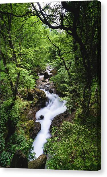 Canvas Print featuring the photograph Bela River, Balkan Mountain by Milan Ljubisavljevic