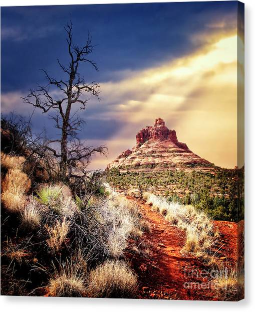 Bell Rock Canvas Print by Scott Kemper