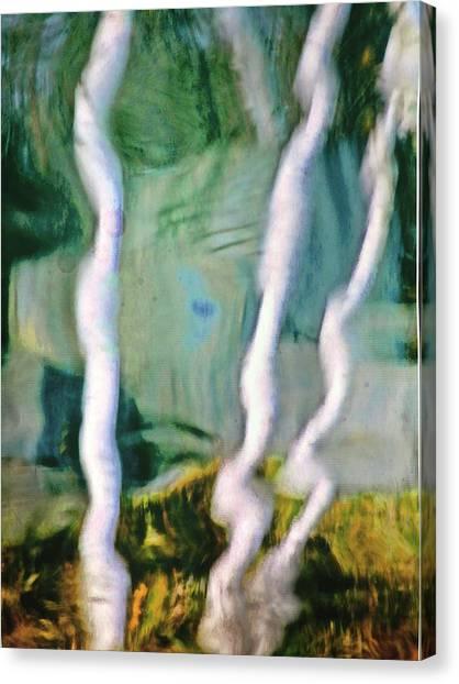 Berch Canvas Print by Gillis Cone