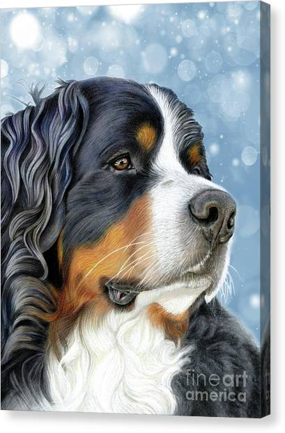 Canvas Print featuring the mixed media Bernese Arctic Blue by Donna Mulley