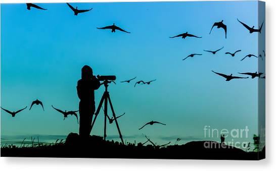 See Canvas Print - Bird Watcher Silhouette by Erkki Alvenmod