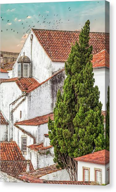 Birds Over Obidos Canvas Print