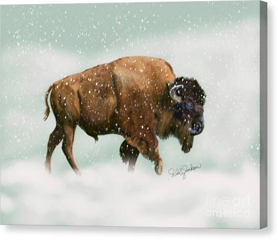 Bison In Snow Storm Canvas Print