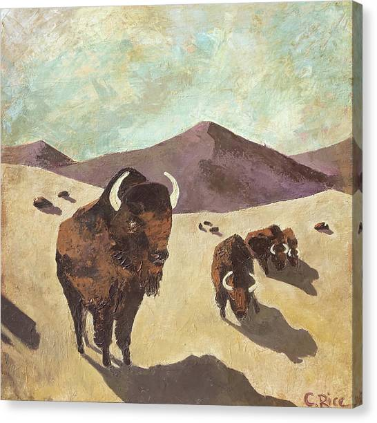 Bison Woodstock Set Canvas Print