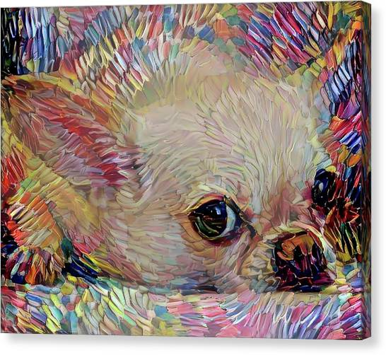 Bitsy The Chihuahua Canvas Print