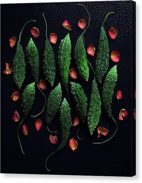 Bitter Melon Styling Canvas Print