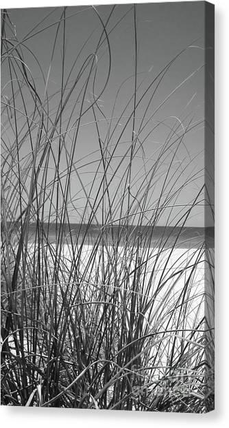 Canvas Print - Black And White Beach View by Megan Cohen