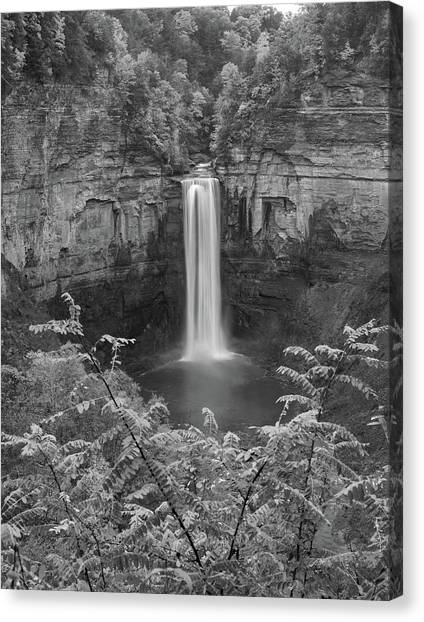 Canvas Print featuring the photograph Black And White Taughannock Falls by Dan Sproul