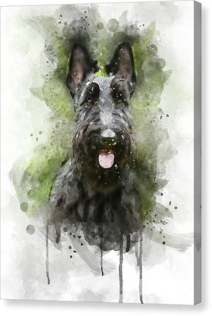 Watercolor Pet Portraits Canvas Print - Black Scottish Terrier by Aged Pixel