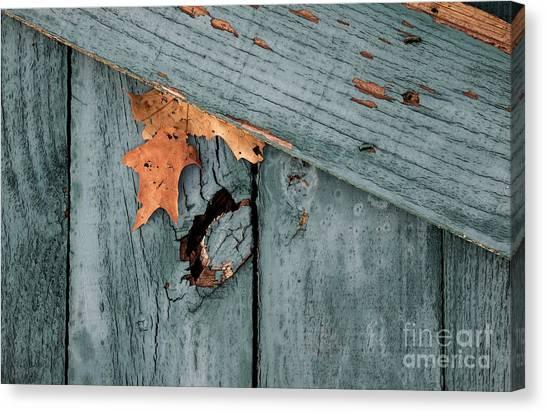 Blue Fence Canvas Print