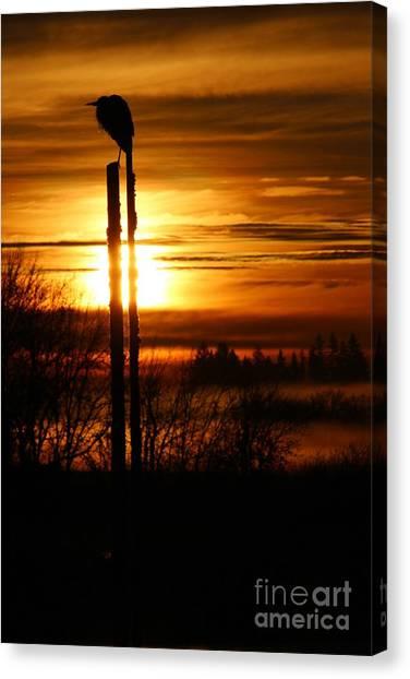 Canvas Print - Blue Heron Sunrise 2 by Nick Gustafson