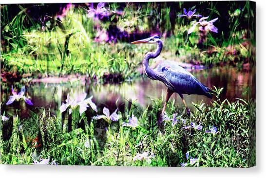 Blue Heron Wetland Magic Landscape Canvas Print by Ginette Callaway