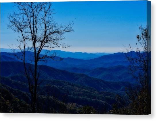 Canvas Print featuring the photograph Blue by Kristi Swift