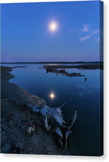 Canvas Print featuring the photograph Blue Moonlight by Davor Zerjav
