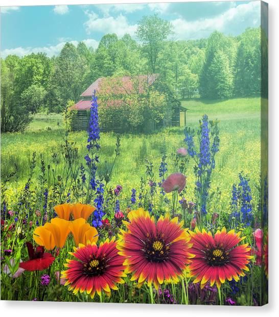Poppys Canvas Print - Blue Ridge Country Wildflowers On A Misty Morning by Debra and Dave Vanderlaan