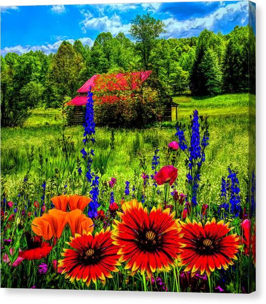 Poppys Canvas Print - Blue Ridge Country Wildflowers Painting by Debra and Dave Vanderlaan