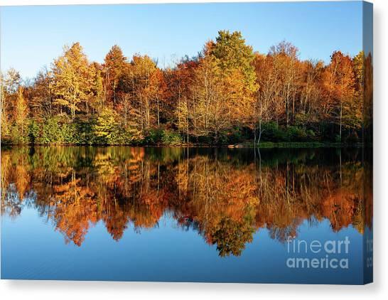 Blue Ridge Parkway Autumn Mirror Image Canvas Print by Dan Carmichael