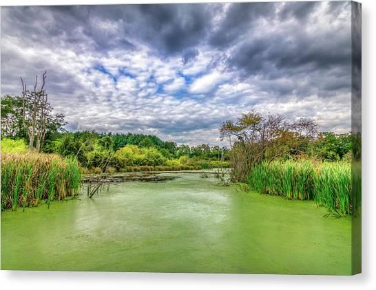 Marsh Grass Canvas Print - Blue Sky And Green Water by Tom Mc Nemar