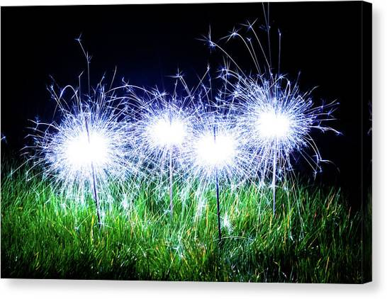 Canvas Print featuring the photograph Blue Sparklers In The Grass by Scott Lyons