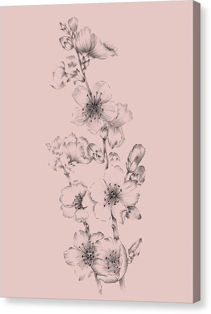 Dahlias Canvas Print - Blush Pink Flower Drawing I by Naxart Studio