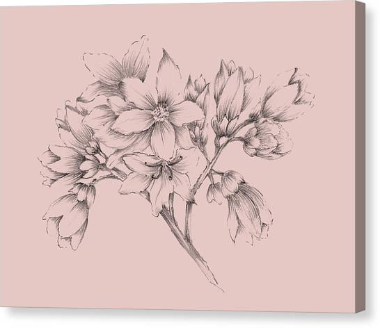 Dahlias Canvas Print - Blush Pink Flower Illustration by Naxart Studio