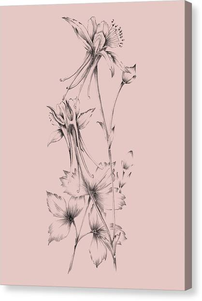 Dahlias Canvas Print - Blush Pink Flower  by Naxart Studio