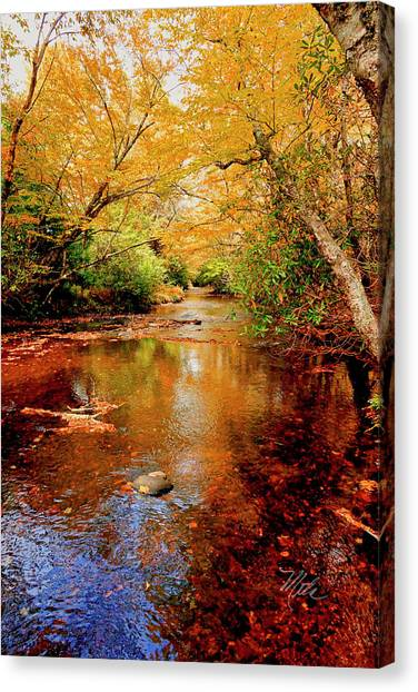 Boone Fork Stream Canvas Print