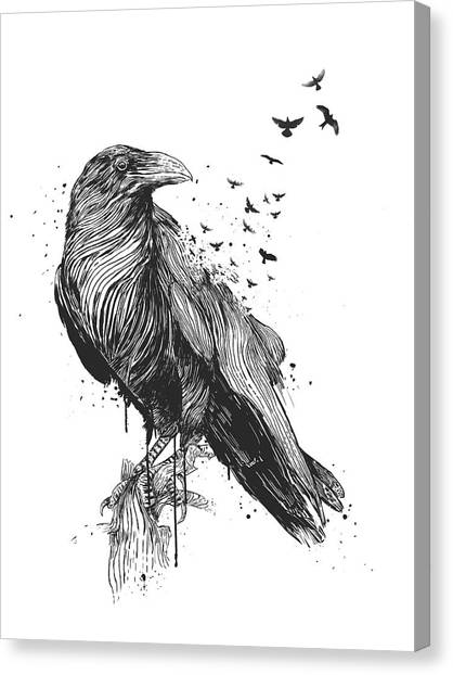 Crows Canvas Print - Born To Be Free  by Balazs Solti