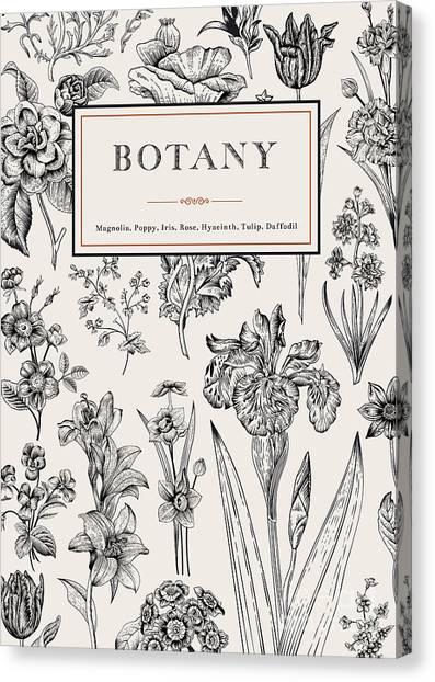 Victorian Garden Canvas Print - Botany. Vintage Floral Card. Vector by Olga Korneeva