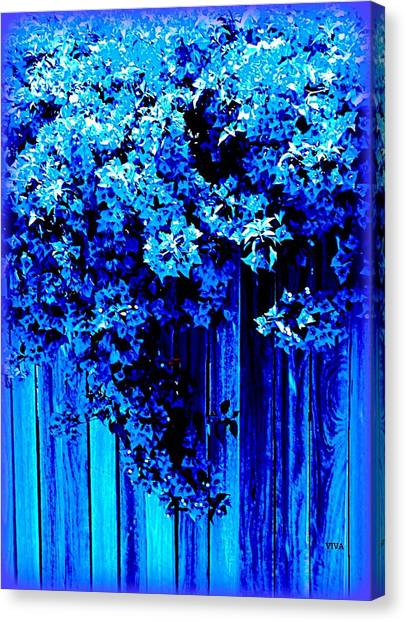 Canvas Print featuring the photograph Bougainvillea Blues by VIVA Anderson