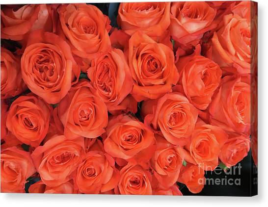 Bouquet Of The  Living Coral Roses Canvas Print