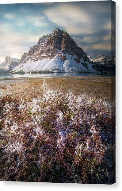 Canvas Print featuring the photograph Bow Lake / Alberta, Canada  by Nicholas Parker